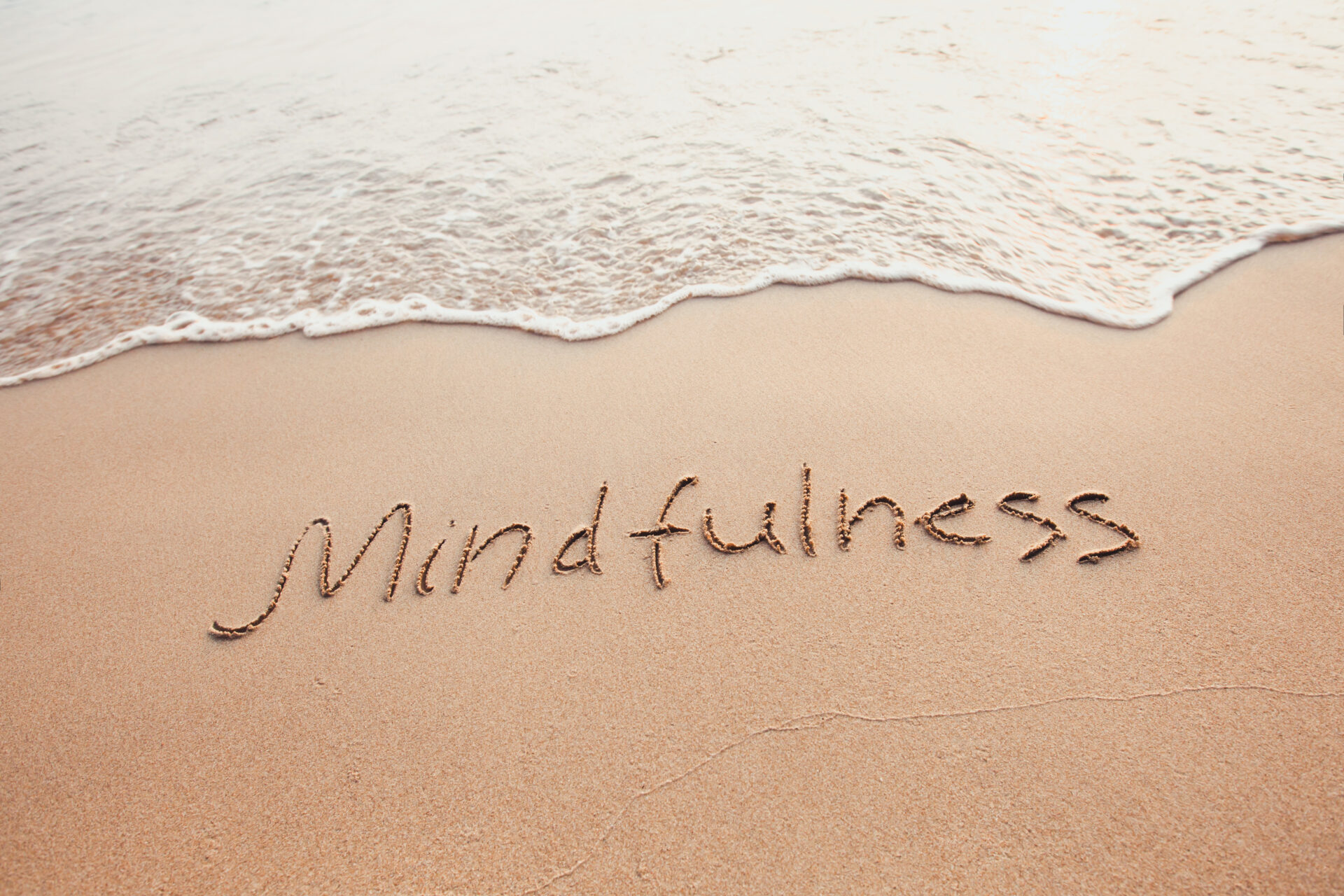 Mindful Fitness – Good Training Demands It!